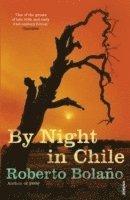 bokomslag By night in chile