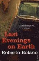 bokomslag Last Evenings On Earth