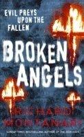 bokomslag Broken Angels