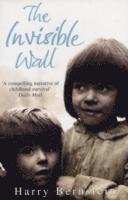 bokomslag Invisible wall