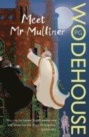 bokomslag Meet Mr Mulliner