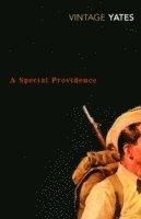 bokomslag A Special Providence