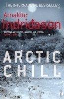 bokomslag Arctic Chill