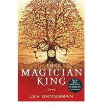 bokomslag Magician king