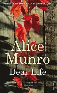 bokomslag Dear Life