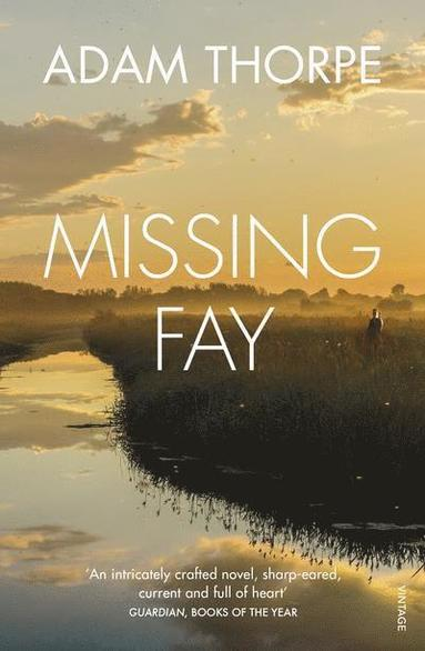 bokomslag Missing Fay