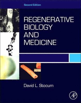 bokomslag Regenerative biology and medicine