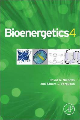 bokomslag Bioenergetics