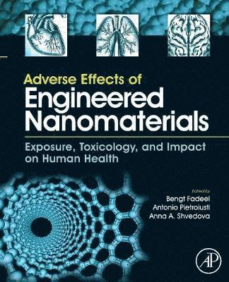 bokomslag Adverse Effects of Engineered Nanomaterials
