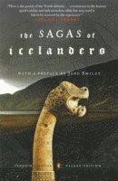 bokomslag Sagas of the icelanders