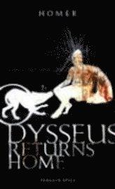 bokomslag Odysseus returns home