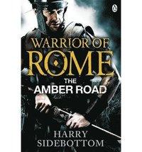 bokomslag Warrior of Rome VI: The Amber Road