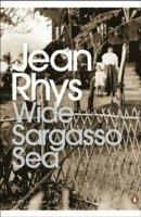 bokomslag Wide Sargasso Sea