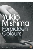 bokomslag Forbidden Colours