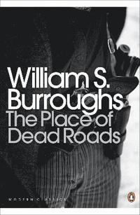 bokomslag The Place of Dead Roads