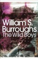 bokomslag The Wild Boys