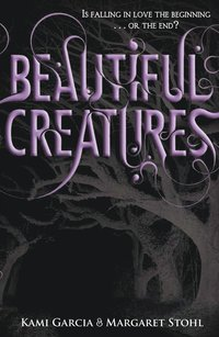 bokomslag Beautiful Creatures