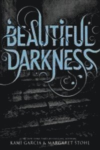 bokomslag Beautiful Darkness (Book 2)