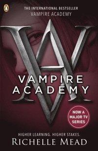 bokomslag Vampire Academy