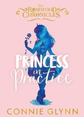bokomslag Princess in Practice