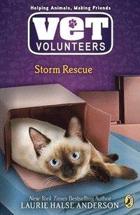 bokomslag Storm Rescue
