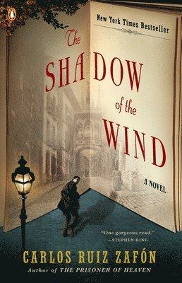 bokomslag Shadow Of The Wind