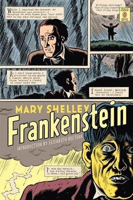 bokomslag Frankenstein (penguin classics deluxe edition)