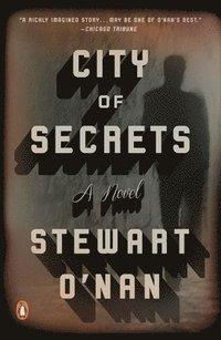 bokomslag City Of Secrets