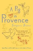 bokomslag A Pig in Provence: Good Food and Simple Pleasures in the South of France