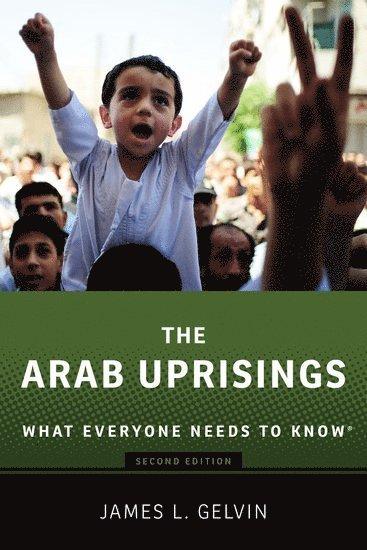 bokomslag The Arab Uprisings: What Everyone Needs to Know