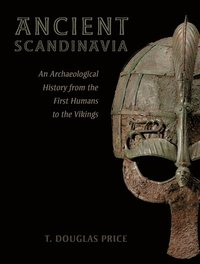 bokomslag Ancient Scandinavia: An Archaeological History from the First Humans to the Vikings