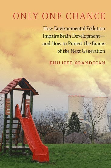 bokomslag Only one chance - how environmental pollution impairs brain development - a