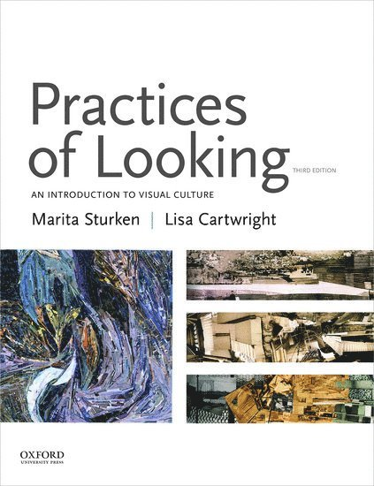 Practices of Looking: An Introduction to Visual Culture - 3rd ed. 1