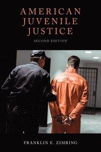 bokomslag American Juvenile Justice