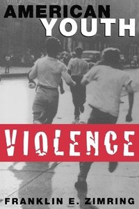 bokomslag American Youth Violence