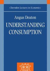 bokomslag Understanding Consumption