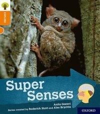 bokomslag Oxford Reading Tree Explore with Biff, Chip and Kipper: Oxford Level 6: Super Senses