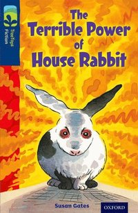 bokomslag Oxford Reading Tree TreeTops Fiction: Level 14 More Pack A: The Terrible Power of House Rabbit