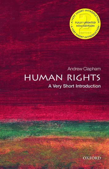 bokomslag Human rights: a very short introduction