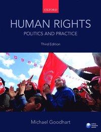 bokomslag Human Rights: Politics and Practice