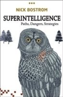 bokomslag Superintelligence: Paths, Dangers, Strategies