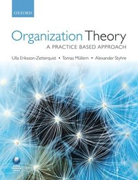 bokomslag Organization Theory: A Practice Based Approach