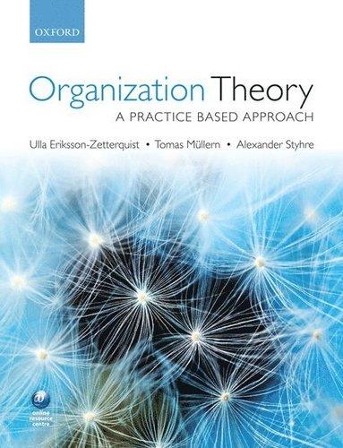bokomslag Organization Theory: A Practice Based Approach