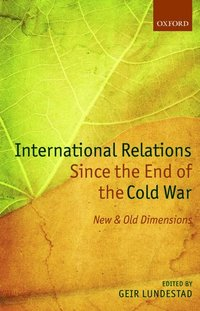bokomslag International Relations Since the End of the Cold War