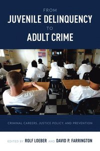 bokomslag From Juvenile Delinquency to Adult Crime