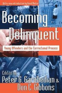 bokomslag Becoming Delinquent