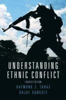 bokomslag Understanding ethnic conflict