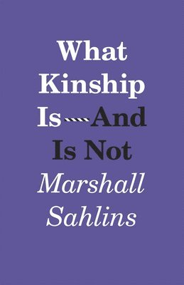 bokomslag What Kinship is-and is Not