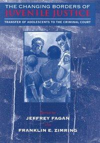 bokomslag The Changing Borders of Juvenile Justice