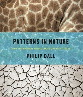 bokomslag Patterns in Nature